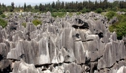 The Stone Forest just south of Kunming, China.