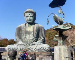 Daibutsu: The Giant Buddha of Kamakura