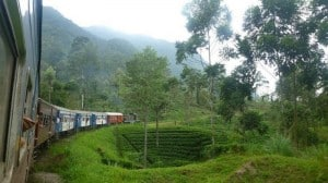 A spectacular view from the train of Sri Lanka's tea plantations.