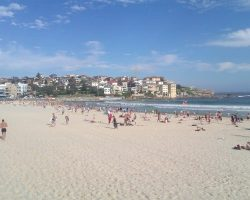 An Insider's Guide to Working in Australia [Guest Post]