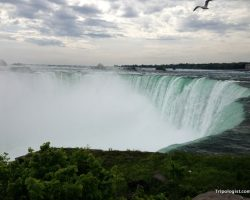 5 Amazing Ways to Experience Niagara Falls