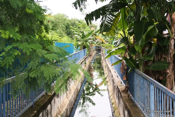 A small tree-lined stream in Malacca, Malaysia.