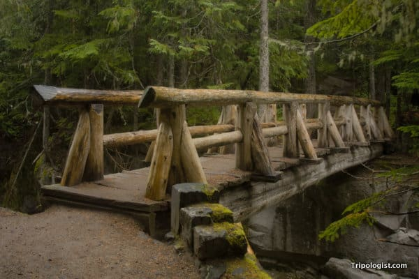 A wooden bridge spanning the upper portion of Catherine Falls at Mount Rainier National Park.