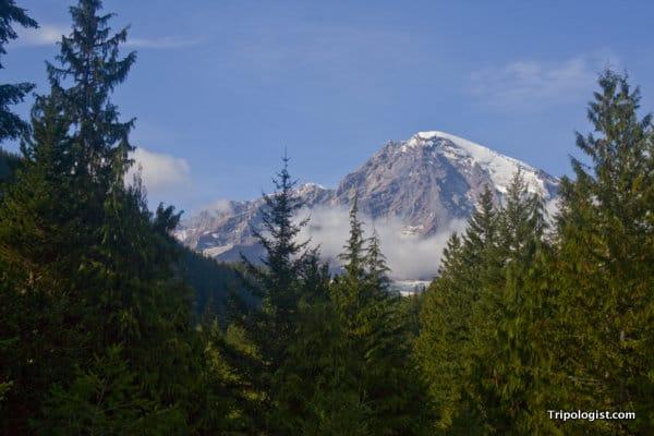 My brief view of Mount Rainier's majestic peak.