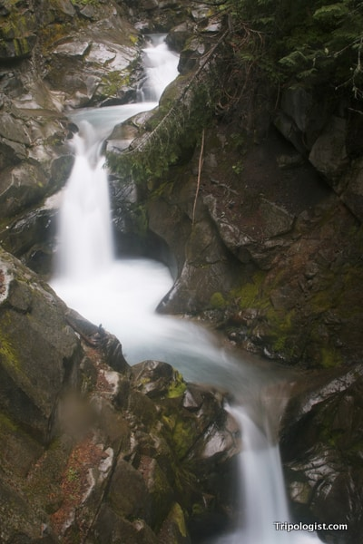 The upper third of Catherine Falls in Mount Rainier National Park.