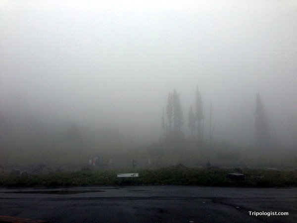 Fog envelopes the Paradise area of Mount Rainier National Park.