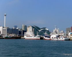 5 Great Things to do in Busan, South Korea