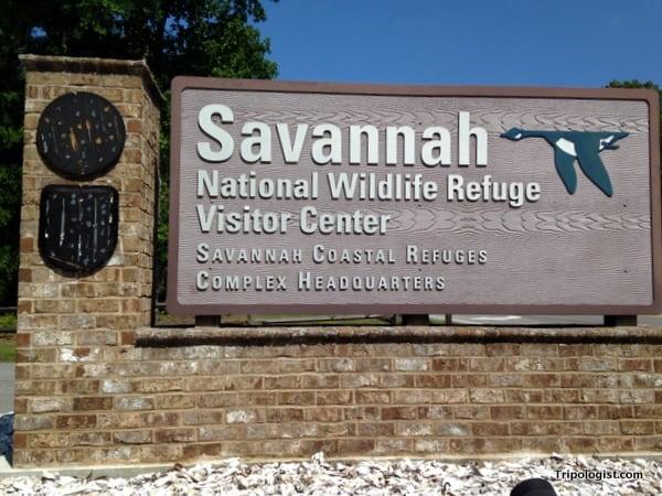 Savannah National Wildlife Refuge.