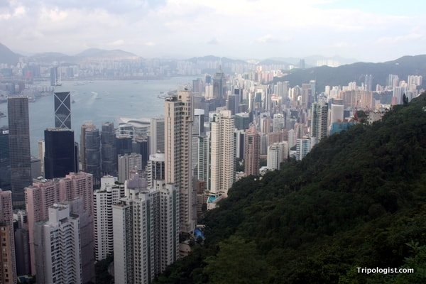 Looking over downtown Hong Kong from the top of Victoria Peak.